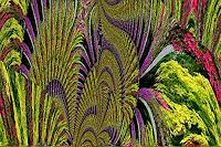 Ulrike-Kroell-Natur-Wald-Diverse-Pflanzen-Moderne-Moderne