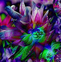 Ulrike-Kroell-Pflanzen-Blumen-Dekoratives-Neuzeit-Romantik