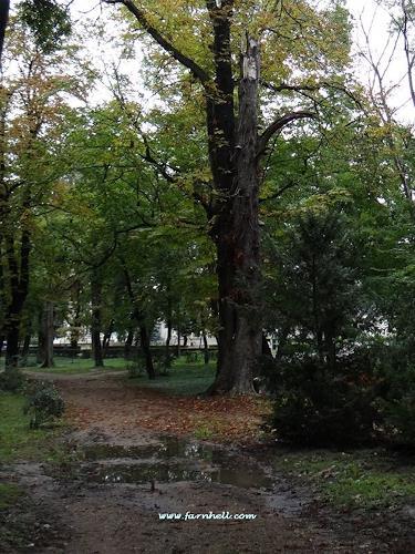 hh farnhell, Herbststimmung, Diverse Romantik