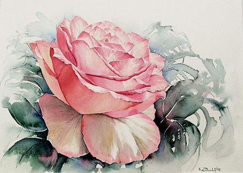 Konrad Zimmerli, Rose, Pflanzen: Blumen, Dekoratives, Abstrakte Kunst