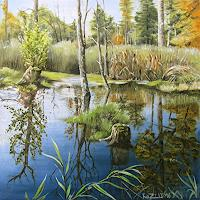 Konrad-Zimmerli-Natur-Wasser-Natur-Wald
