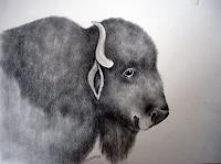 Saza-Bacheh-Diverse-Tiere-Humor