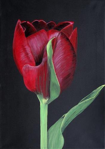 Barbara Vapenik, Tulip, Pflanzen: Blumen, Gegenwartskunst, Expressionismus