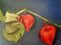 Beate-Fritz-Dekoratives-Pflanzen-Fruechte
