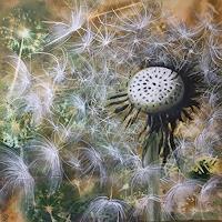 Beate-Fritz-Pflanzen-Blumen-Diverse-Gefuehle-Gegenwartskunst-Gegenwartskunst