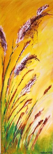 agabea, August, Diverse Pflanzen, Landschaft: Sommer, Land-Art