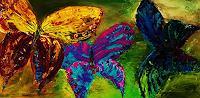 agabea, Schmetterlinge
