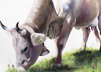 Vera-Kaeufeler-Tiere-Land