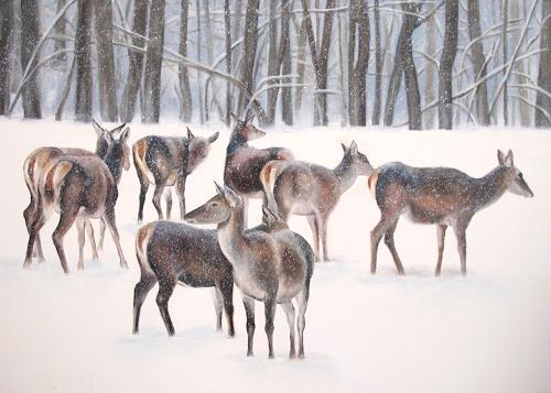 Vera Käufeler, Winterland, Tiere: Land, Landschaft: Winter