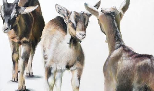 Vera Käufeler, Gitzi-Meeting, Tiere: Land, Natur, Abstrakte Kunst