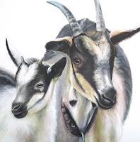 Vera-Kaeufeler-Natur-Tiere-Land