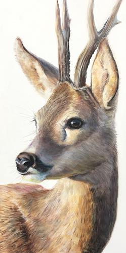 Vera Käufeler, Capriolus, Natur, Tiere: Land, Fotorealismus