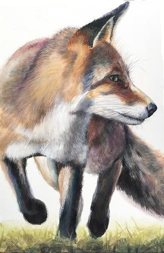 Vera Käufeler, Red Fox, Natur, Tiere: Land, Fotorealismus
