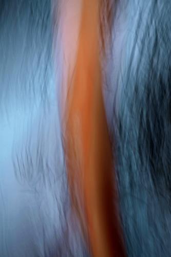 Beate Kratt, fusion, Abstraktes, Bewegung, Gegenwartskunst, Abstrakter Expressionismus