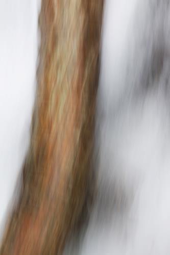 Beate Kratt, still, Abstraktes, Bewegung, Gegenwartskunst