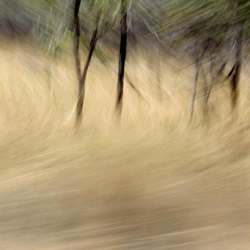 Beate Kratt, PASSING MOMENTS, Abstraktes, Diverse Landschaften, Gegenwartskunst, Abstrakter Expressionismus