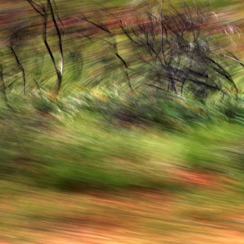 Beate Kratt, Passing Moments, Abstraktes, Diverse Landschaften, Gegenwartskunst