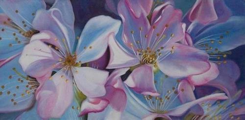Ela Nowak, /Kirschblüten, Pflanzen: Blumen, Dekoratives, Fotorealismus, Expressionismus