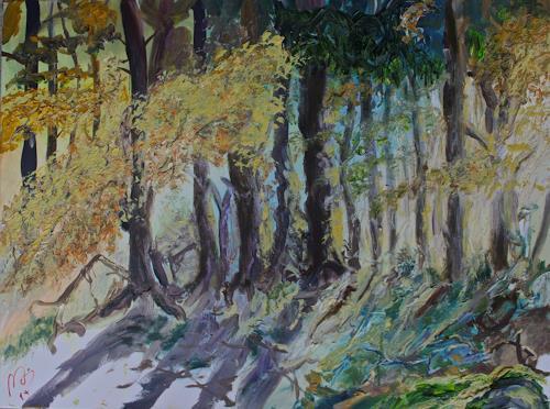 Reimund O. Boderke, Sonneneinfall, Diverses, Diverse Landschaften