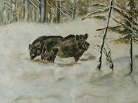 ALBERTO, Sauen im Schnee