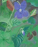 Marija-Weiss--Dr-Pflanzen-Blumen-Landschaft-Moderne-expressiver-Realismus