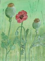 Marija-Weiss--Dr-Pflanzen-Pflanzen-Blumen-Moderne-expressiver-Realismus