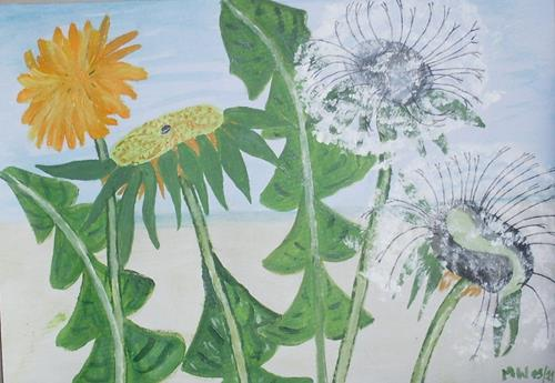 Marija Weiss, Dr., Löwenzahn, Pflanzen: Blumen, Pflanzen, expressiver Realismus