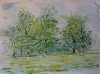Sigrun-Laue-Natur-Wald