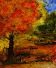 S. Köttgen, Herbstspaziergang