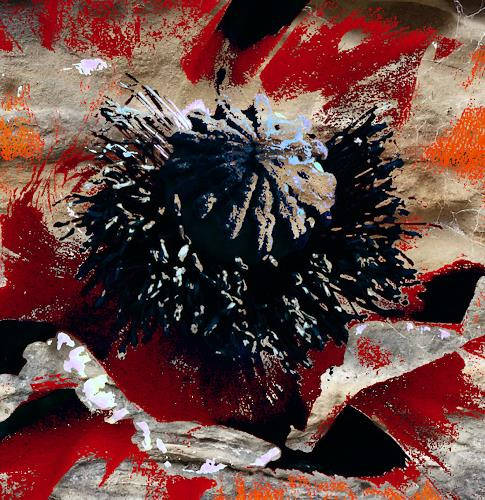 Susanne Köttgen, Digital Art Work, Diverses, Abstrakter Expressionismus