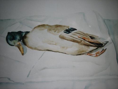 Els Driesen, dode eend, Tiere: Luft, Tod/Krankheit, expressiver Realismus